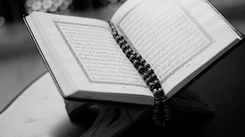 Muslimischer Gesellschaftsvertrag