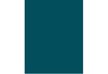 MFI Moschee